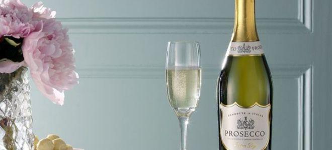 Игристое вино Просекко (Prosecco)