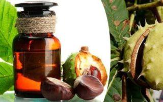Лечебная настойка конского каштана — 3 рецепта приготовления и правила приема
