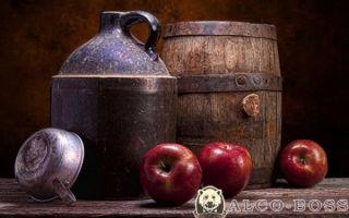 Процесс приготовления самогона из яблок — пошаговый рецепт