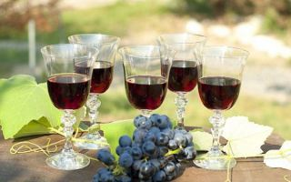 Простой рецепт вина из Изабеллы в домашних условиях — пошаговое приготовление