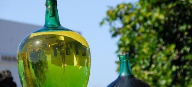 Вино из зеленого винограда - приготовление в домашних условиях