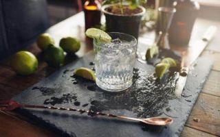 Напиток «Джин-Тоник» — лучшие способы приготовления