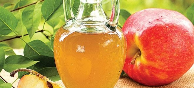 Как сделать самогон из яблок Секреты и советы 32