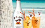 Как пить ликер Малибу — правила употребления и популярные коктейли